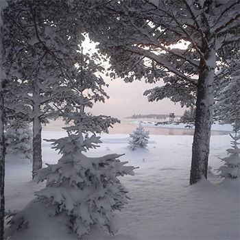 Julbord på Munkviken i LÖVÅNGER | Julbordsportalen.se